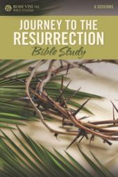Journey To The Resurrection (Rose Visual Bible Studies)