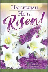 Bulletin - Hallelujah, He is Risen! (Package of 100)