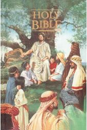KJV Seaside Bible