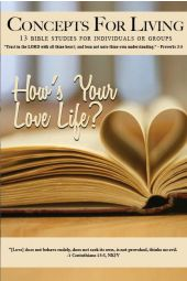"Concepts for Living | Adult ""How's Your Love Life?"""