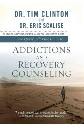 The Quick-Reference Guide to Addictions and Recovery Counseling: 40 Topics, Spiritual Insights, And Easy-To-Use Act